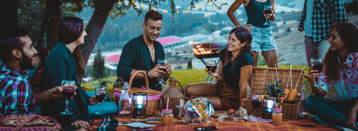 unge voksne på picnic