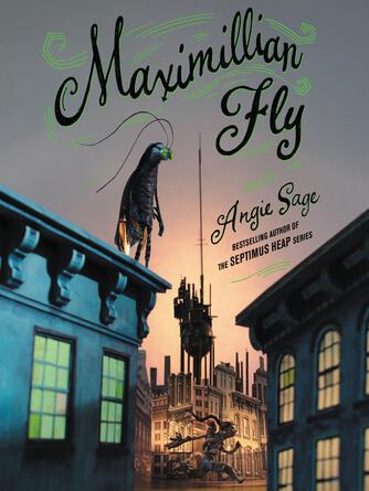Angie Sage: Maximillian fly