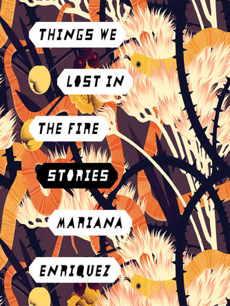 Mariana Enriquez: Things we lost in the fire : Stories