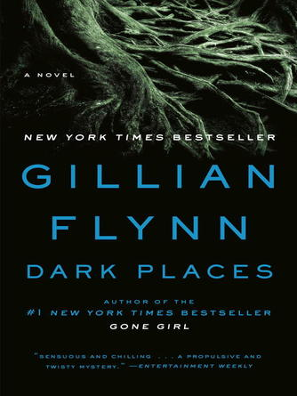 Gillian Flynn: Dark places : A Novel