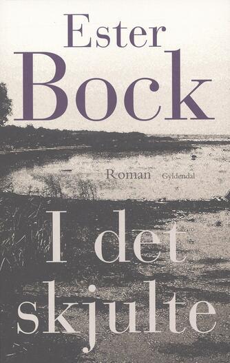 Ester Bock: I det skjulte : roman
