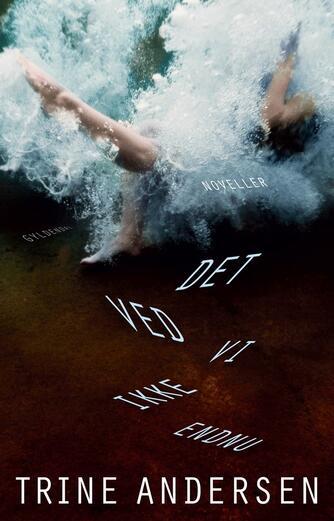 Trine Andersen (f. 1969): Det ved vi ikke endnu : noveller