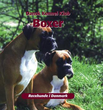 Jan Anderschou: Boxer