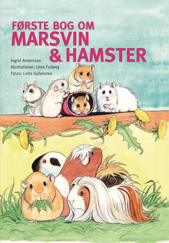 Ingrid Andersson: Første bog om marsvin & hamster