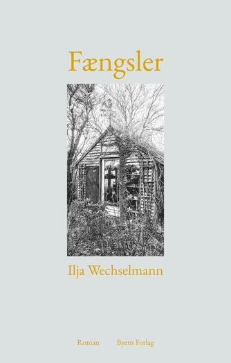 Ilja Wechselmann: Fængsler : roman