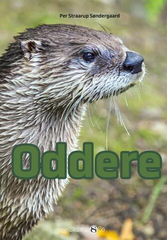 Per Straarup Søndergaard: Oddere