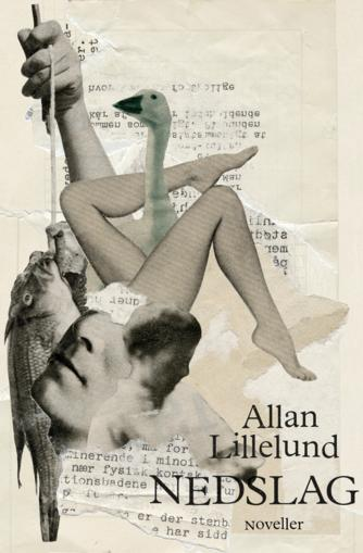 Allan Lillelund Andersen: Nedslag : noveller