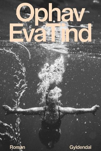Eva Tind: Ophav : roman
