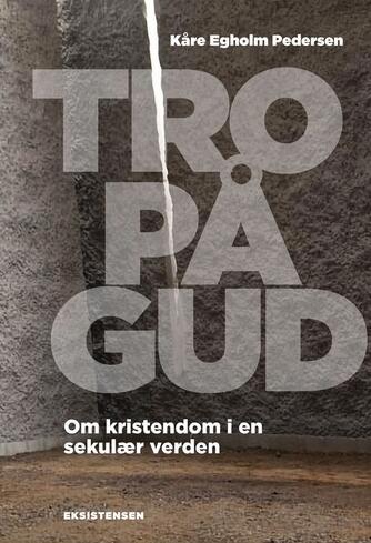 Kåre Egholm Pedersen (f. 1971): Tro på Gud : om kristendom i en sekulær verden