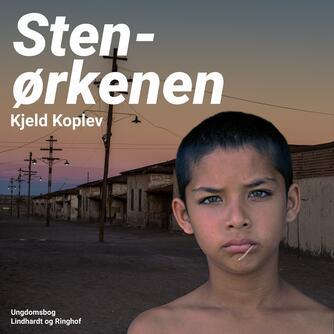 Kjeld Koplev: Stenørkenen