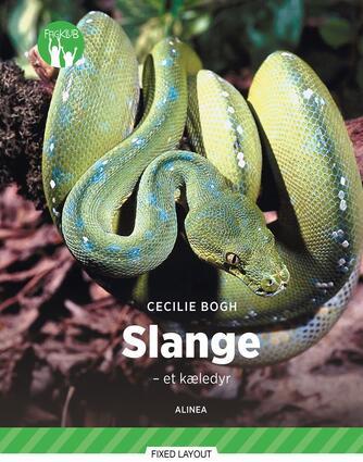 Cecilie Bogh: Slange : et kæledyr