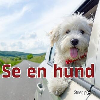Marianne Randel Søndergaard: Se en hund