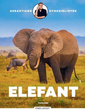 Sebastian Klein: Elefant
