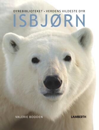 Valerie Bodden: Isbjørn