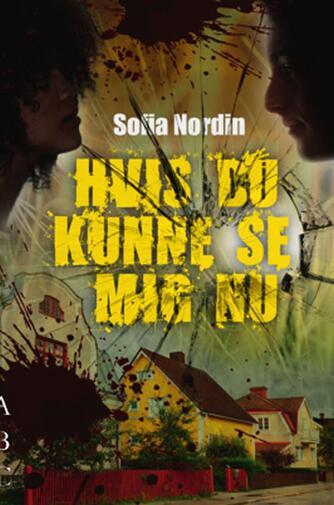 Sofia Nordin: Hvis du kunne se mig nu