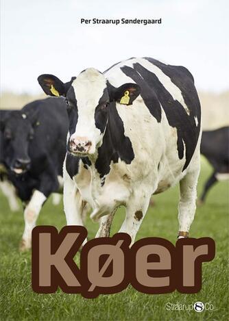 Per Straarup Søndergaard: Køer