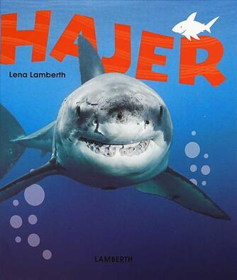 Lena Lamberth: Hajer