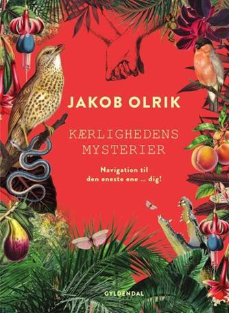 Jakob Olrik: Kærlighedens mysterier : navigation til den eneste ene - dig!