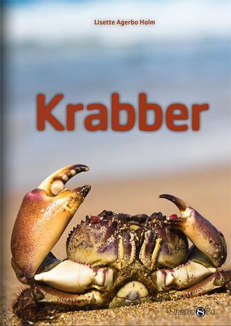 Lisette Agerbo Holm: Krabber