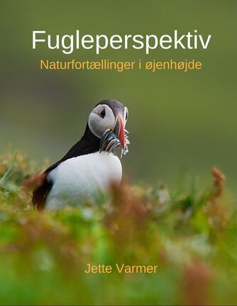 Jette Varmer: Fugleperspektiv : naturfortællinger i øjenhøjde