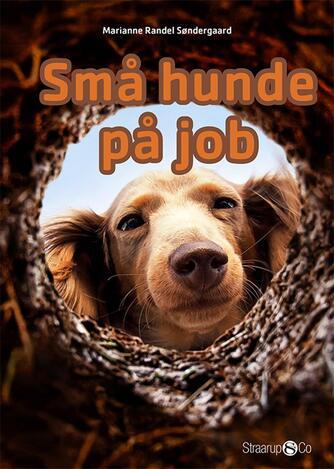 Marianne Randel Søndergaard: Små hunde på job