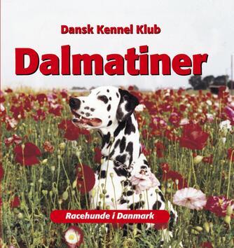 : Dalmatiner
