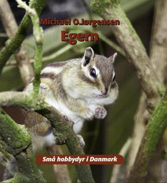 Michael O. Jørgensen: Egern