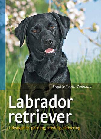 Brigitte Rauth-Widmann: Labrador retriever : udvælgelse, pasning, træning og aktivering