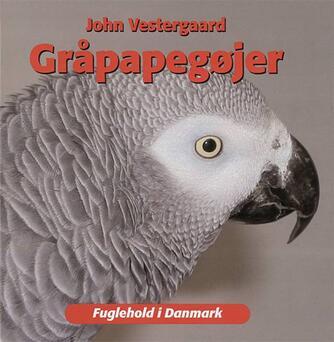 John Vestergaard: Gråpapegøjer