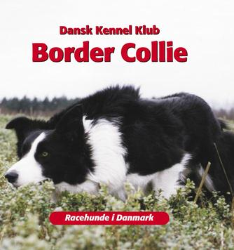 Emmy Simonsen: Border Collie