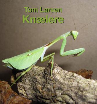 Tom Larsen (f. 1961): Knælere