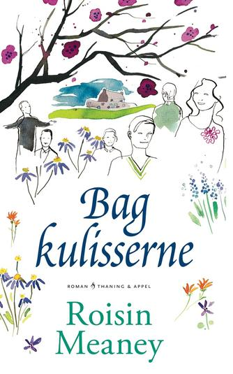Roisin Meaney: Bag kulisserne : roman