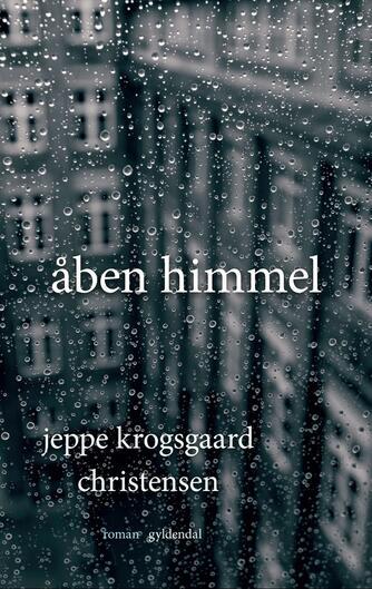 Jeppe Krogsgaard Christensen: Åben himmel : roman