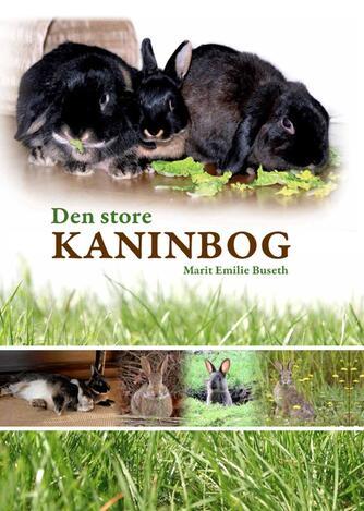 Marit Emilie Buseth: Den store kaninbog