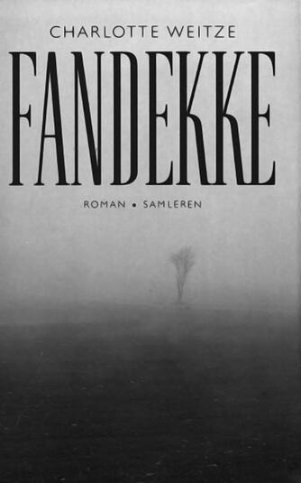 Charlotte Weitze: Fandekke : roman