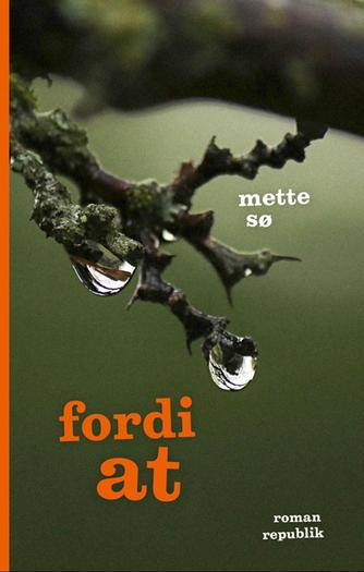 Mette Sø: Fordi at : roman