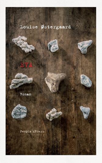 Louise Østergaard (f. 1973): Eva : roman