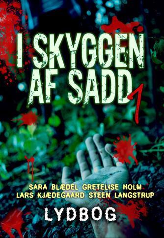: I skyggen af Sadd : 4 forfattere, 4 historier, een roman