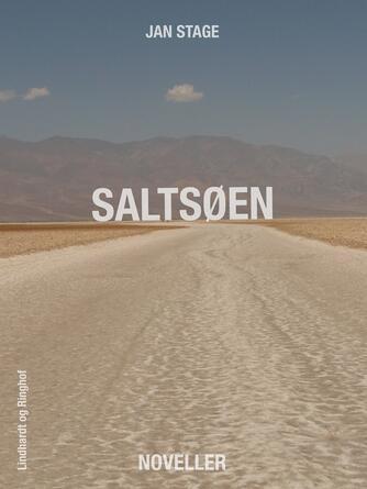 Jan Stage (f. 1937): Saltsøen : noveller