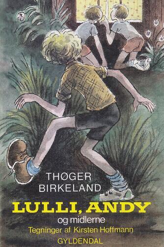 Thøger Birkeland: Lulli, Andy og midlerne