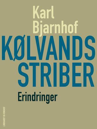 Karl Bjarnhof: Kølvandsstriber : erindringer