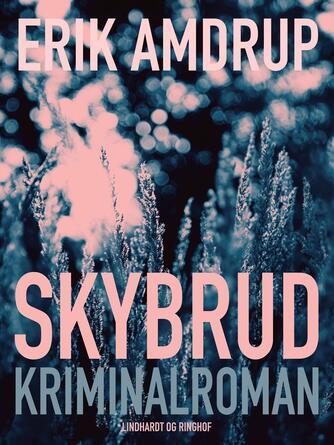 Erik Amdrup: Skybrud : kriminalroman
