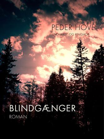 Peder Hove: Blindgænger : roman