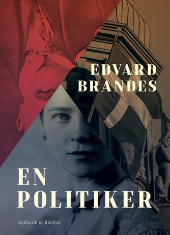Edvard Brandes: En politiker