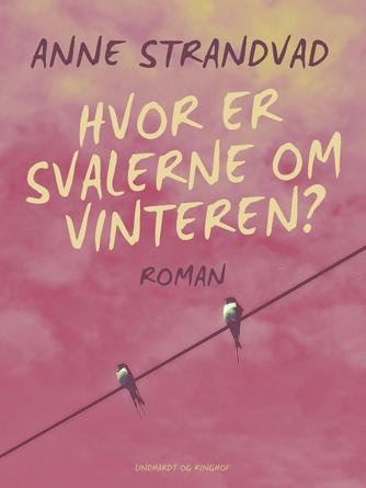 Anne Strandvad: Hvor er svalerne om vinteren? : roman