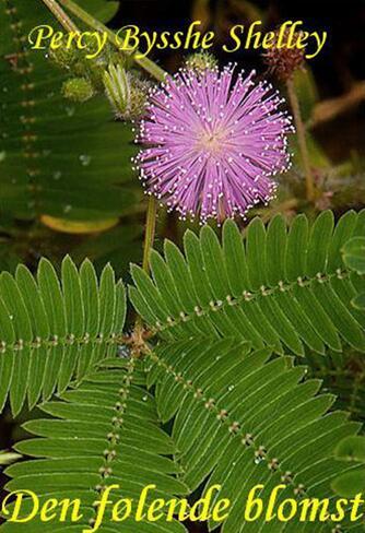Percy Bysshe Shelley: Den følende blomst