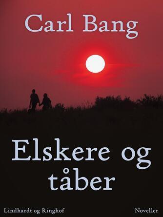 Carl Bang: Elskere og tåber : noveller