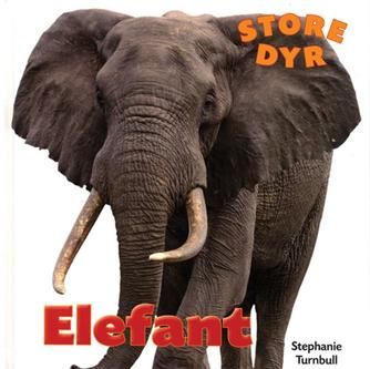 Stephanie Turnbull: Elefant
