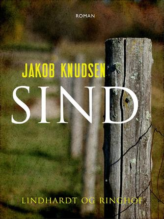 Jakob Knudsen (f. 1858): Sind : roman (Ved Richardt Gandrup)