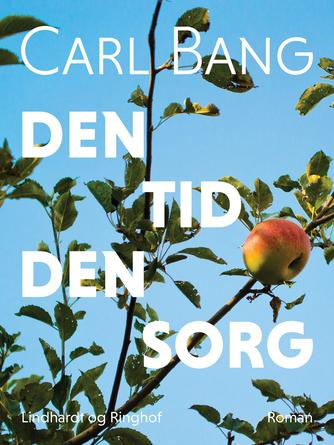 Carl Bang: Den tid den sorg : roman